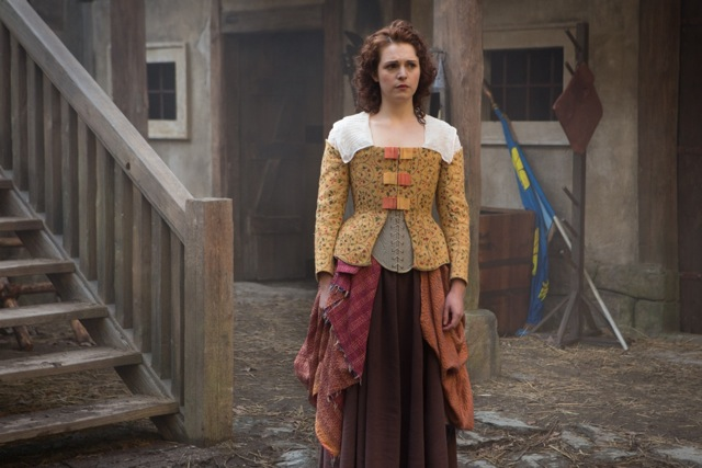 Musketeers costume textiles